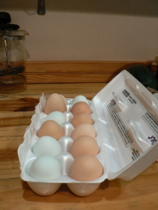 Eggs from our hens!